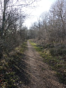 sentier vers le fort de Montfaucon