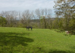 crête de Vorges vers Montferrand