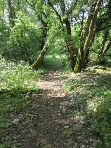 Sentier de la Chapelle vers Thoraise