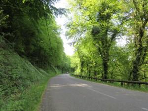 Route entre Vorges et Boussières