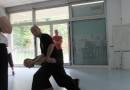 Tai Ji martial et Qi Gong des 5 animaux avec Yannick Costanza