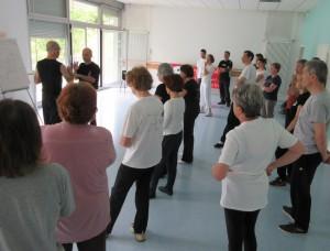 Stage de Tai Ji martial avec Yannick Costanza
