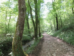 ruisseau et chemin vers Vorges