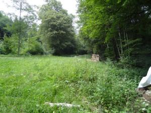 route vers Chalèze dans le bois