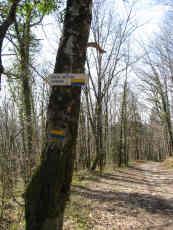 Chemin vers la Roche Bottine