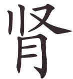 Shen = rein