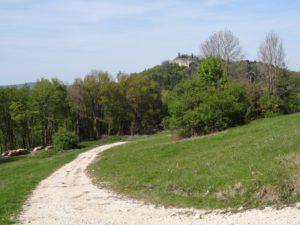 Châtillon sur Lison depuis le Châtelet de Lizine
