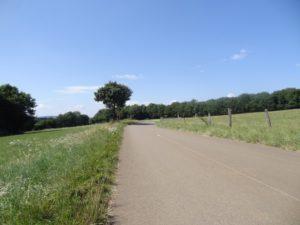 route D135 de Lizine aux belvédères
