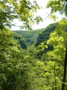 vallée de la Loue gorges de Nouailles