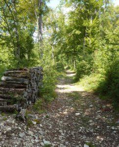 chemin de la ferme d'Ully au Châtelet
