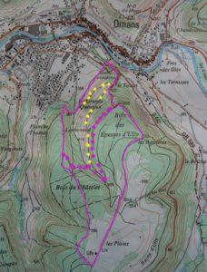Carte d'Ornans vers Ully