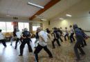Stage de Qi Gong pour la santé animé par Yannick Costanza