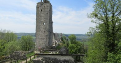Donjon du castel Saint Denis en mai 2016
