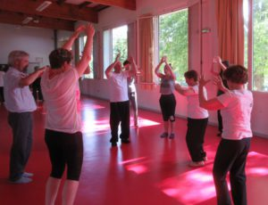 Qi Gong stage Juin 18