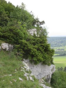 Malbrans rocher Colonne