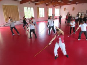 Tai Ji Jian épée chat agile
