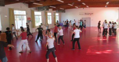 Réussite du premier stage de la saison : 36 personnes pour 9 ateliers de Tai Ji, épée, Qi Gong, Tui Shou, self-défense