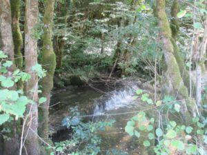 rivière Brême