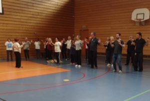 qi Gong vol hirondelle